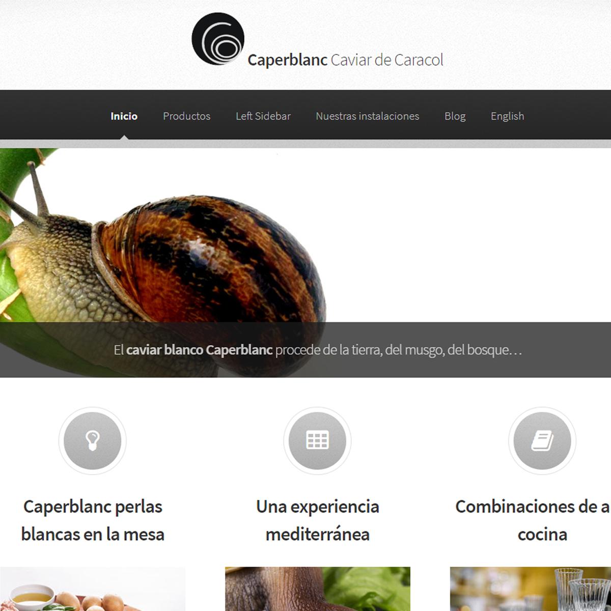 Diseño Web por Fernando Pacheco Bellas